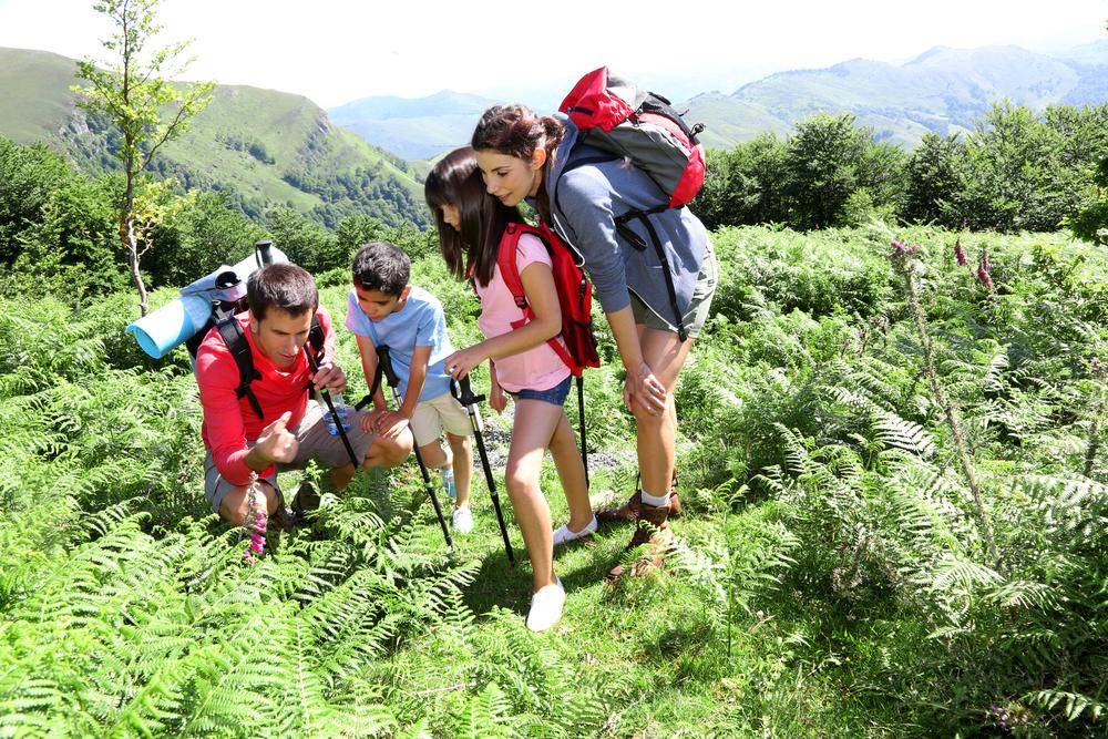 Family Hike Blog